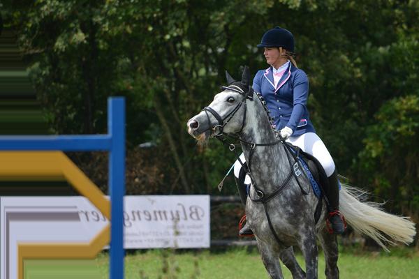 cours d'equitation adulte particulier ou collectif centre equestre de la dame blanche chaponost lyon rhone