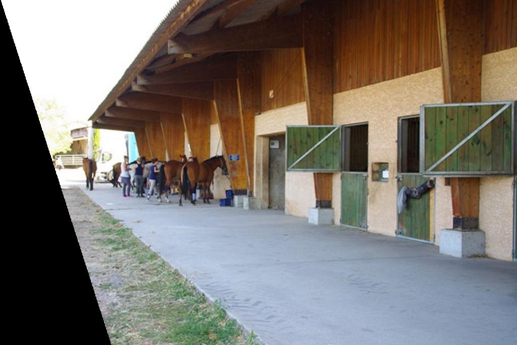 Ecuries proprietaires et club avec boxes et sellerie centre equestre de la dame blanche chaponost lyon rhone