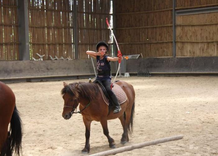 Stage equitation multidiscipline tir a l'arc poney centre equestre de la dame blanche chaponost lyon rhone