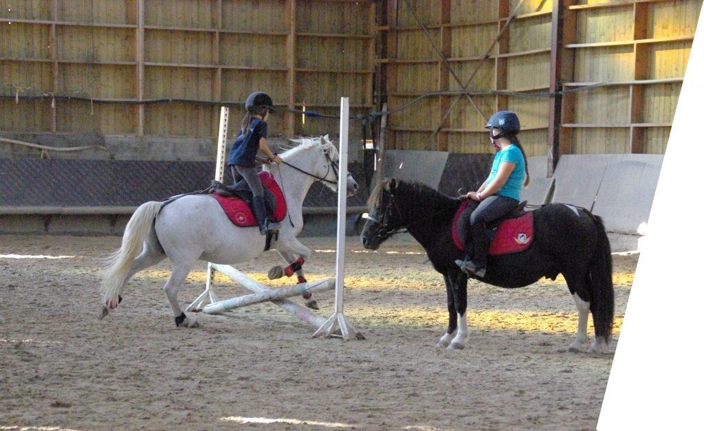 Cours d'equitation collectif initiation poney enfant centre equestre de la dame blanche chaponost lyon rhone