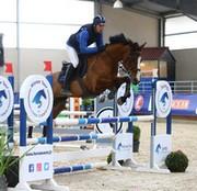 CSO concours equitation Saut d'obstacle amateur cheval chaponost lyon rhone