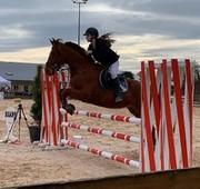 CSO concours equitation Saut d'obstacle club cheval chaponost lyon rhone